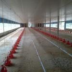 29541518 1477043989071239 8555080567320739840 o 150x150 - Só na Bença destaca instalação de Granja em Primavera de Rondônia