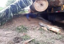 Trabalhador morre esmagado após tora cair de caminhão em Monte Negro