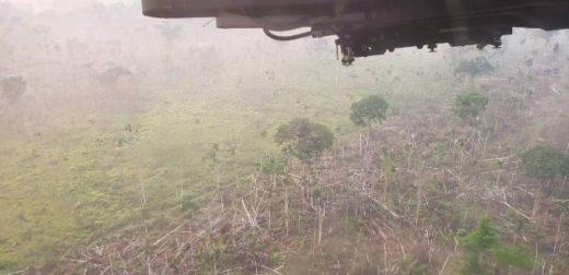 PF descobre advogados e topógrafos ajudando grileiros no desmatamento de parque e terra indígena, em RO
