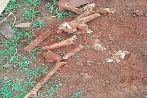 Restos de ossada humana é encontrada em construção