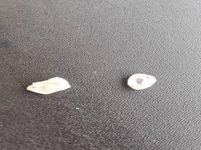 Polícia Federal prende, em Cacoal, suspeito de comercializar diamantes ilegalmente; pedras e apetrechos foram apreendidos