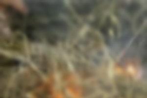 Ladrão é queimado vivo após cometer diversos crimes em comunidade; cenas fortíssimas