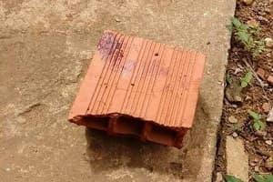 Homem é preso após agredir brutalmente o primo a tijolada